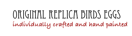Original Replica Birds Eggs Logo
